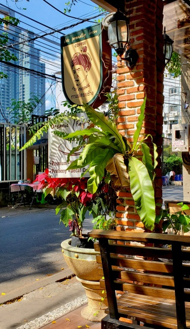 Doi Soi: My favorite spot for a coffee in Bangkok, everyday.